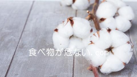 食べ物が危ないのじつは体に悪い油?一流レストランで使われる綿実油とは?
