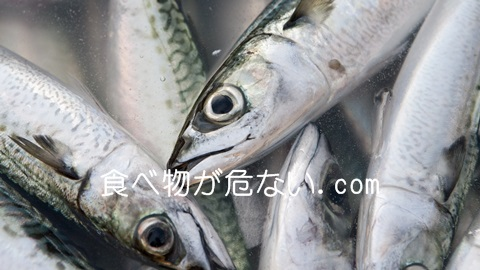 魚の油(DHA・EPA)で病気予防!健康な体に欠かせない訳とは?
