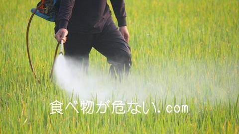 農薬が残った食品は食べたら危険!神経を狂わせる農薬の怖さ