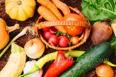 まず作物の栽培方法は、慣行栽培(かんこうさいばい)、有機栽培、特別栽培の3種類に分けることができます。