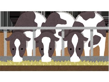 ポイント2.牛や豚、鶏などは、どんなふうに育てられているか?