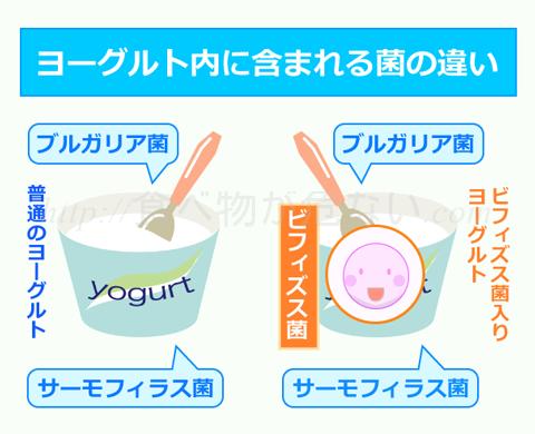 そのため、ビフィズス菌入りのヨーグルトには乳酸菌(ブルガリア菌・サーモフィラス菌)も含まれているため、ビフィズス菌入りのヨーグルトの方が整腸作用は期待できるということ。