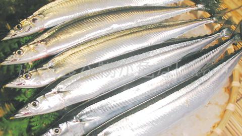 魚のEPA・DHAで健康な体に!水銀や放射能など有害物質の影響は?