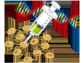 遺伝子組み換え大豆は、だし醤油やポン酢に使われている