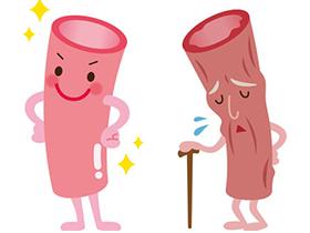 体の老化は血管からはじまる