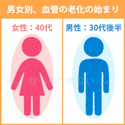 血管の老化は、男性で30代後半、女性は40代頃から起こると考えられています。