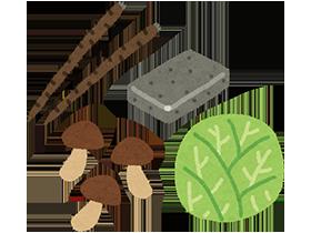 食物繊維は野菜や果物に多く含まれていますが、特に豊富な食品はインゲンや大豆、小豆、シソ、ゴボウ、ひじき、切り干し大根など。