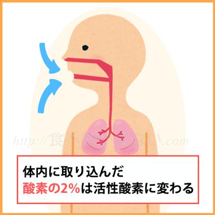 さらに喫煙や飲酒、激しい運動、紫外線、ストレス、電磁波、大気汚染などの影響によっても、活性酸素は体内に増加するのです。