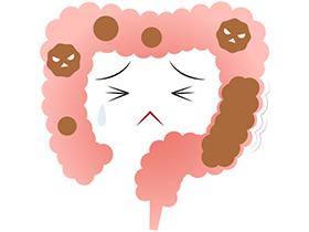 ビタミンDやカルシウムの過剰摂取は、便秘を招く