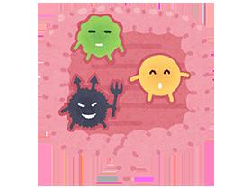ちなみに腸内には、腸内環境を整える「善玉菌」と腸内環境を悪化させる「悪玉菌」、日によって善玉菌と悪玉菌のどちらかと同じ働きをする「日和菌」があります。