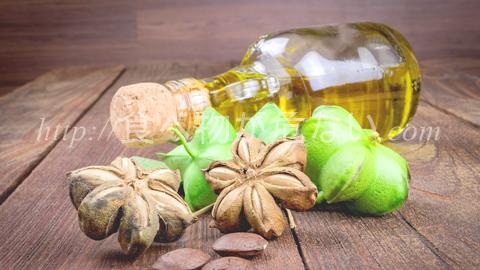 サチャインチオイルは熱に強いオメガ3の油!亜麻仁油やえごま油との違いは?